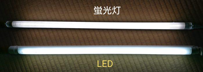 蛍光灯とLED